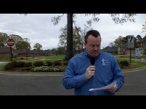 Baton Rouge Real Estate Video Blog: Green Trails At Shenandoah March 2010 Report